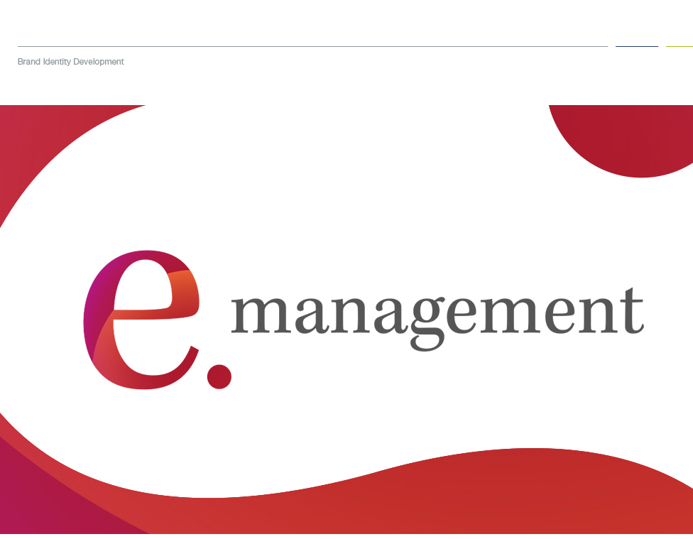e-Management-x-CS__WebsitePortfolio_01 case study